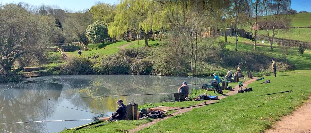 Find Luccombes Coarse Fishery